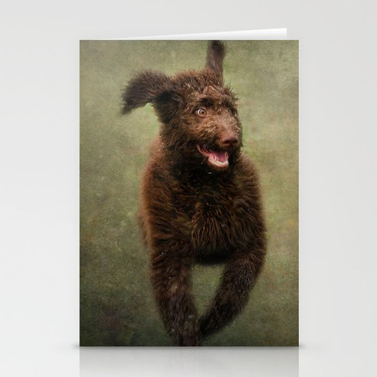 I am not a Muppet...I am a Labradoodle!!!! Stationery Cards