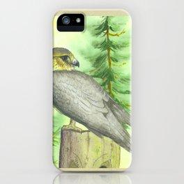 Merlin Falcon iPhone Case