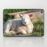 lamb iPad Cases featuring lamb by Marcel Derweduwen