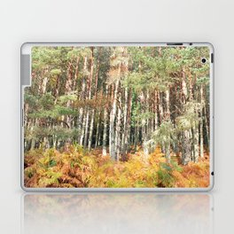 I have a room all to myself; it is nature Laptop & iPad Skin