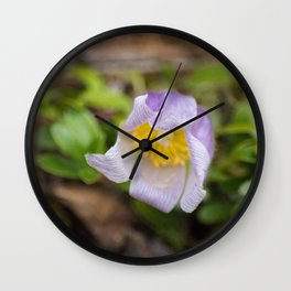 Spring's First Bloom Wall Clock