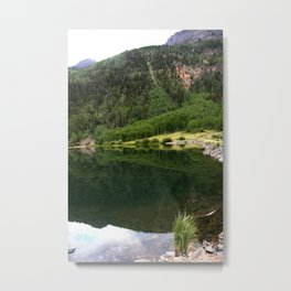 Row of Aspens on Crystal Lake Metal Print