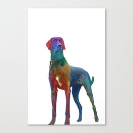 Great Dane Uncropped Canvas Print