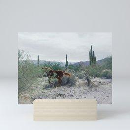 Mexican Horse Hide Mini Art Print