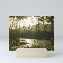 Te Rau Puriri Regional Park sunset South Head Kaipara Harbour Mini Art Print