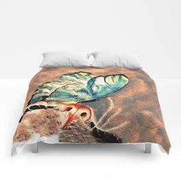 Catafloria Comforters