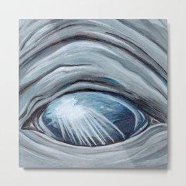 Through Their Eyes - Whale Metal Print
