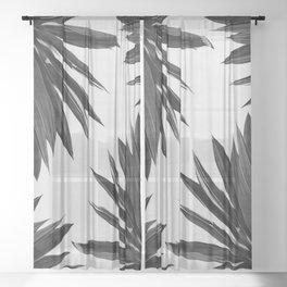 Agave Cactus Black & White Sheer Curtain