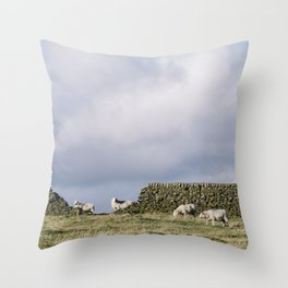 Sheep beside a drystone wall at sunset. Derbyshire, UK. Throw Pillow