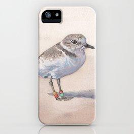Monterey Bay Snowy Plover iPhone Case