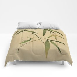 Mantis and Bamboo Comforters