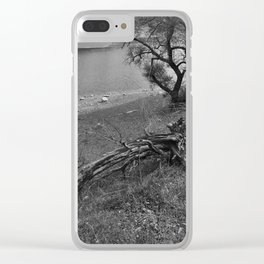 Growth and Decay Clear iPhone Case
