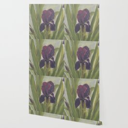 All Iris Wallpaper
