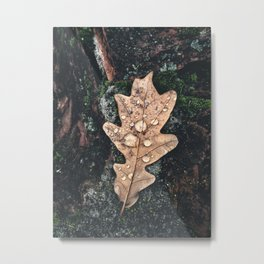 Lonely Leaf With Water Drops. Moody Autumn Background Metal Print