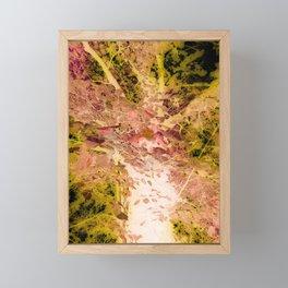 Look Up At The Tree Framed Mini Art Print