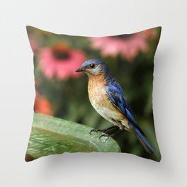 Perched Eastern  BlueBird Throw Pillow