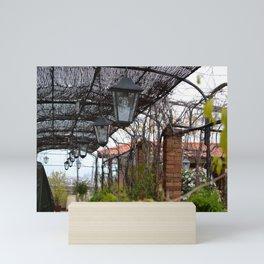 Roof Top Garden in Florence (1/5) Mini Art Print