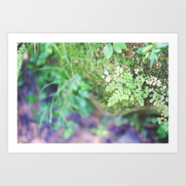 Life in the Undergrowth 02 Art Print