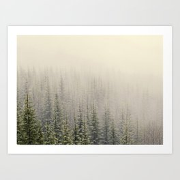 Mountain Haze Art Print