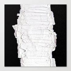 Black, White & White Canvas Print