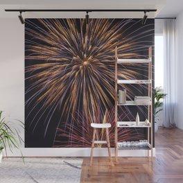 Fireworks Fantasy Wall Mural
