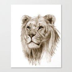 A Lion :: Without Pride Canvas Print