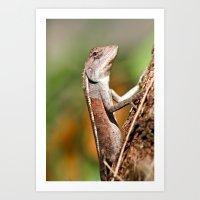 lizard Art Prints featuring lizard by Anja Ergler