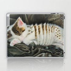 Sleeping Accordion Laptop & iPad Skin