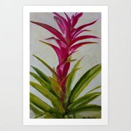Bromeliad - Native plant Art Print