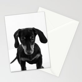 Weenie dog (black and white) Stationery Cards