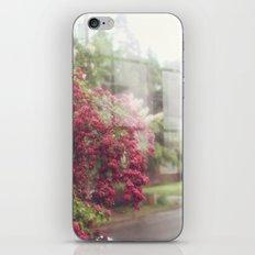 Rainy Window iPhone Skin