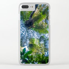 Giant ferns in redwood forest, Rotorua, New Zealand Clear iPhone Case