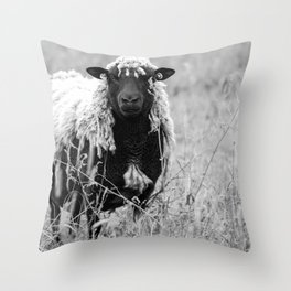 Sheep with sharp eyes Throw Pillow