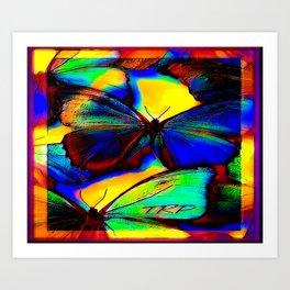 Insect Models: Beautiful Butterflies 07-01 Art Print