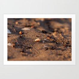 Sunrise Beach - cm2b Photography (7 of 7) Art Print