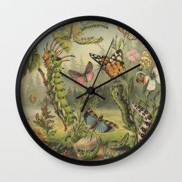 Insects Antique Lithograph- Schutzeinrichtung Wall Clock