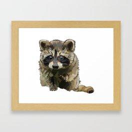 Raccoon Cub on white background * Animal Lover Gift Framed Art Print