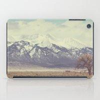 colorado iPad Cases featuring Colorado by Amy Harlow