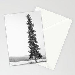 B&W Lone Spruce Tree Stationery Cards