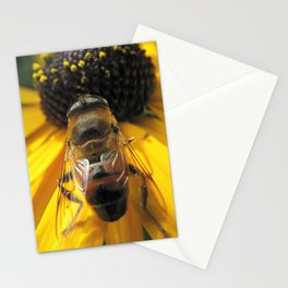 A Bee's Life Stationery Cards