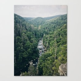 Another Mountain View Canvas Print