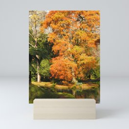 Autumn colors Mini Art Print