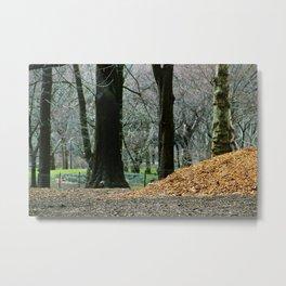 Central Park 80's Metal Print