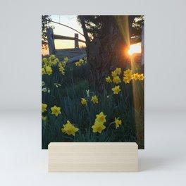Sun Kissed Mini Art Print