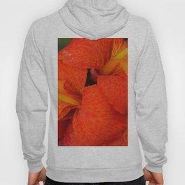 Orange Canna Lily by Teresa Thompson Hoody