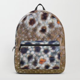 Trout 2 Backpack