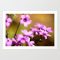 flora Art Prints featuring Flora  by MVision Photography