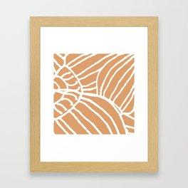 Cone Shell Framed Art Print