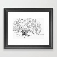 A Tree Framed Art Print