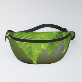 Waterdrops on a leaf Fanny Pack